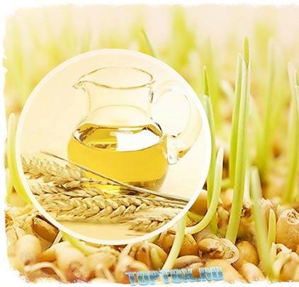 зародышей пшеницы