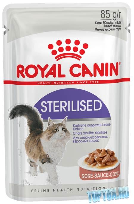 Canin Sterilized
